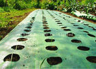 Polypropylene Garden Ground Weed Control Fabric For Agriculture Covering