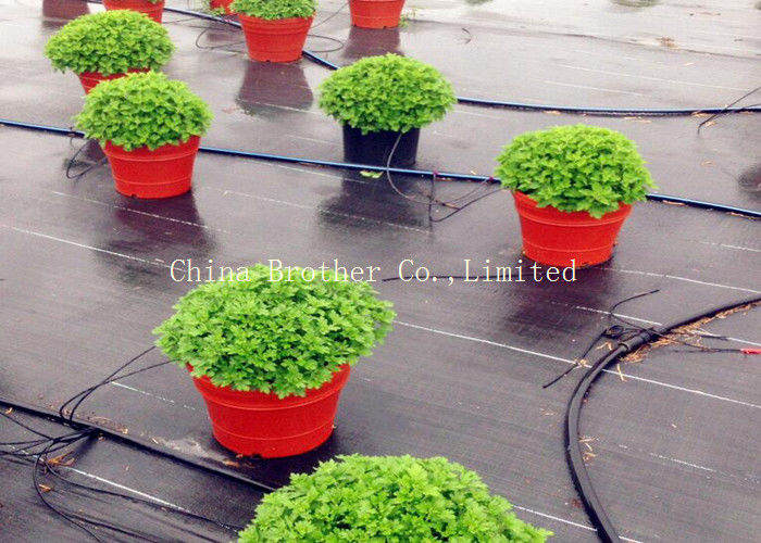 Durable Garden Ground Weed Control Fabric Farm Mulch Film Black Color Eco - Friendly